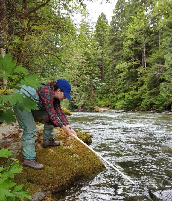 Lillian McGill collects a water isotope sample from the Tolt River, WA during June 2017