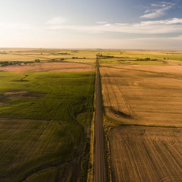 Agricultural fields in Montana