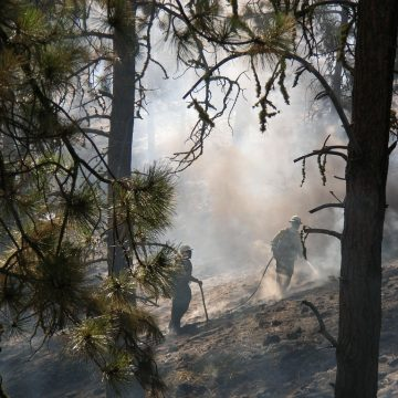 Crews mop up hot spots during Colockum Powerline Fire. 'Hand crews' were part of the 98 crew members from DNR and the U.S. Forest Service who worked to contain the fire to 30 acres.