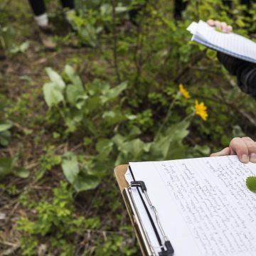 UW Cascades field trip