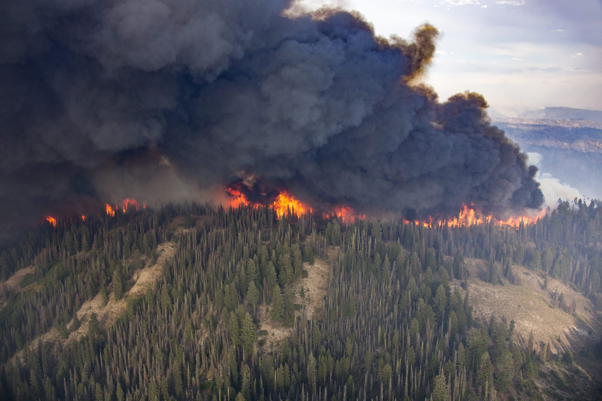 Black plumes of smoke engulf a forest ridge during the Pioneer Fire in Boise National Forest, Idaho, 2016