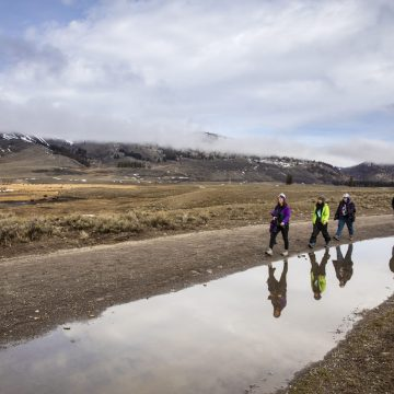 UW Professors and students walking through Yellowstone National Park