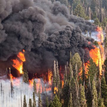 Plumes of black smoke and fire consume a forested hillside