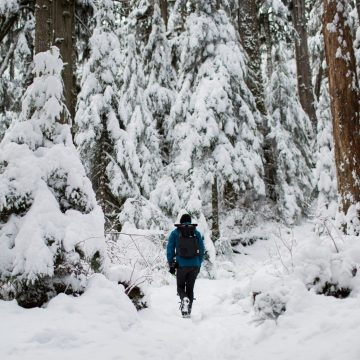 A hiker walks a snowy tree-lined trail in Granite Falls, Washington