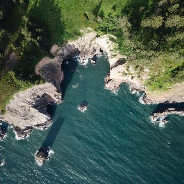 Aerial view of cove along the rugged Oregon coastline
